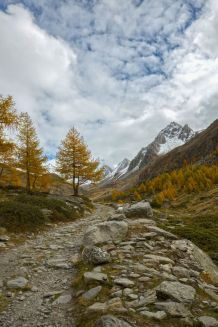 Wandern-in-Südtirol11